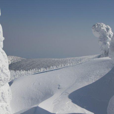 자오 온천의 얼음의 괴물