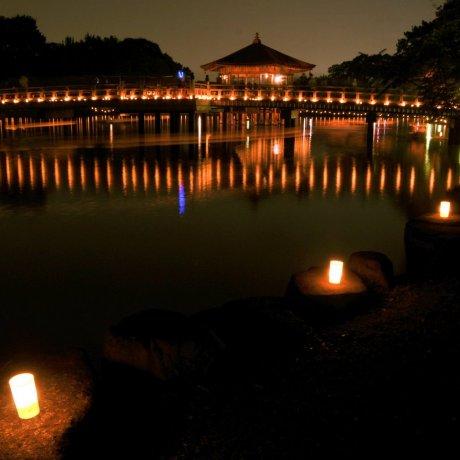 나라 토카에 전등 페스티벌이 8월 5일에 시작됩니다.