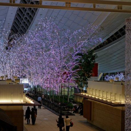 하네다 공항에서 도쿄 도심으로 들어가기