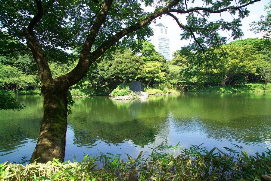 여행자를 위한 도쿄 가이드 투어