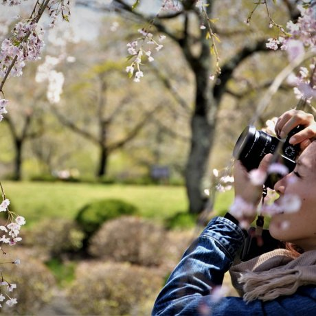 일본식 정원 사진 클래스
